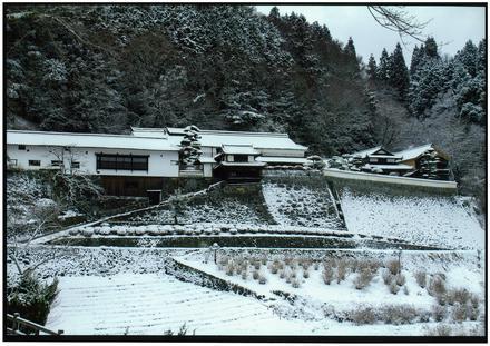 橋 本 滝 江