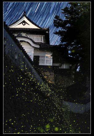 橋本 滝江