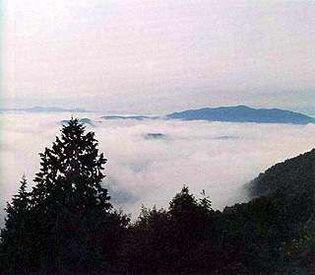 霧の海展望の丘