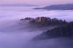 雲海に浮かぶ備中松山城を望む展望台(雲海展望台)